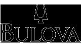boluva-logo